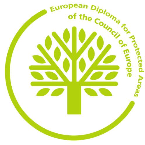 Европейска диплома